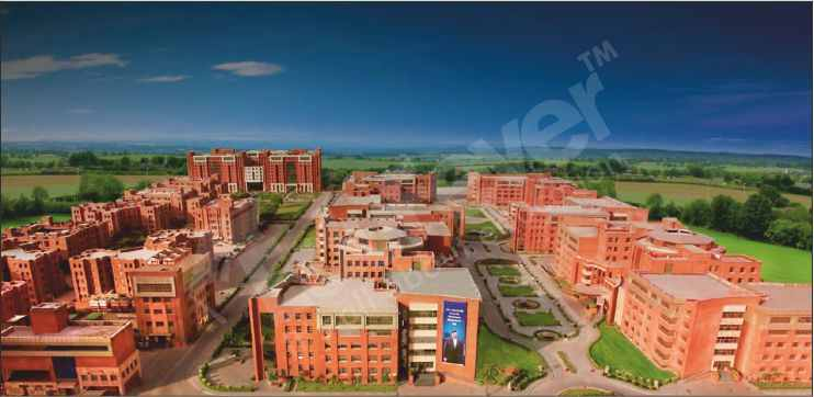 Top 7 Amity University Courses Other Than Medical & Engineering