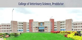 College Of Veterinary Science Proddatur