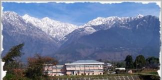 GCN Veterinary College Palampur, Negi Veterinary College Palampur