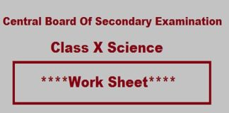 CBSE Class X Science Work Sheet, CBSE Class X Science Study Material, CBSE Class 10 Science Work Sheet