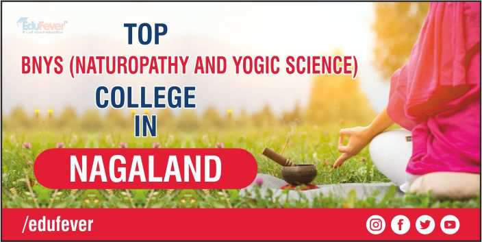TOP BNYS COLLEGE IN NAGALAND