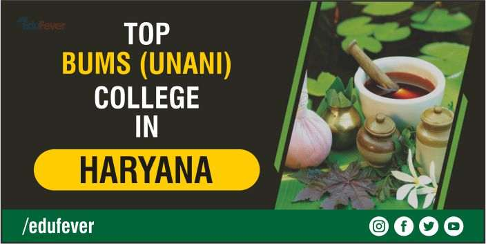 Top BUMS College in Haryana