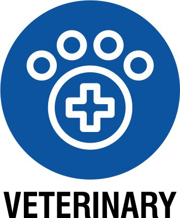 Top Veterinary Colleges in India