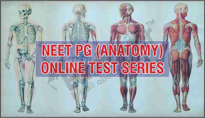 Anatomy test series