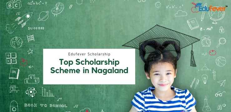 Top Scholarship Scheme in Nagaland
